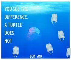 You See the Difference - A Turtle Does Not!  Mache einen Unterschied - sage Nein zu Einwegplastik / Plastik.  Erfahre 84 Tipps wie auch du auf Plastik verzichten kannst. Hier klicken!  Zero Waste EcoYou