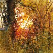 Watercolor art - Q&A with Artist Ann Blockley – Watercolor art