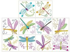 Hatched in Africa - Dragonfly Jewels - Punch with Judy