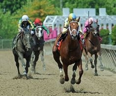Noble Bird Returns to Form in Pimlico Special. 5/20/16