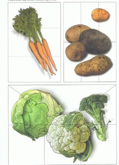 warzywa 1 Mct Oil Weight Loss, Vinegar Weight Loss, Fruits And Veggies, Fruits And Vegetables, Farm Coloring Pages, Vegetable Crafts, Yoga For Weight Loss, Food Themes, Food N