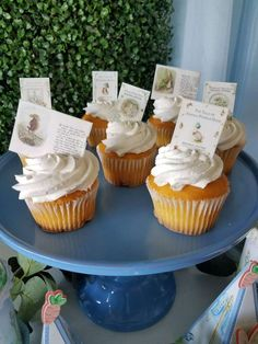 The cupcakes at this Peter Rabbit birthday party are adorable! See more party ideas and share yours at  CatchMyParty.com #catchmyparty #partyideas #peterrabbit  #peterrabbitparty #peterrabbitcupcakes #boybirthdayparty