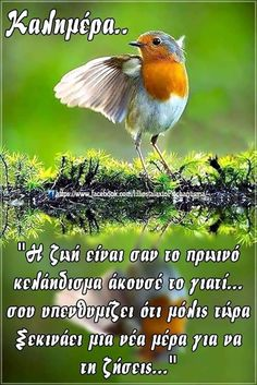 Good Night, Good Morning, Greek Quotes, Positive Quotes, Positivity, Irene, Spiritual, Greeting Cards, Nighty Night