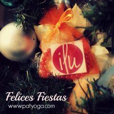 Se acerca el solsticio de invierno, la navidad y casi termina el 2014…waooo que rápido, cuanto hemos compartido en este año, los acontecimientos han sido muchos y además se siente como que todo pasó todo vertiginosamente, cuantas experiencias! ¿Lo sientes?