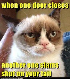 when one door closes  *