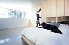 Modern bedroom with birch built-ins by Modern live/work building in Halifaxs by Susan Fitzgerald Architecture