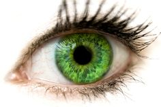 The eyes have it #lifeinstyle #greenwithenvy