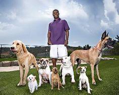 San Diego Dog Training