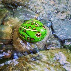 #SassiDipinti #StonePainting #RockPainting #HandPainted #Frog #Rana