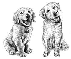 Kent Barton scratch board illustrations.