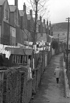 Rear of terrace, from the alley. Grey, bleak, cramped. The hill beyond is another world.