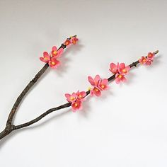 Egg Carton Cherry Blossoms by Amanda Formaro for Spoonful.com
