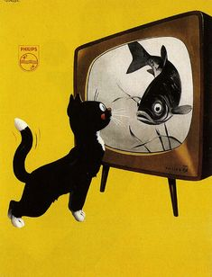 Black Cat looking at Fish Vintage Retro Poster