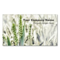 Wheat Field Custom Business Cards. This is a fully customizable business card and available on several paper types for your needs. You can upload your own image or use the image as is. Just click this template to get started!
