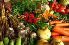 Ganhando bons nutrientes com alimentos cotidianos | #Abóbora, #Agrião, #Alimentos, #Cenoura, #CouveDeBruxelas, #Emagrecimento, #Nutrientes, #Pectina, #SaisMinnerais, #Shiitake, #VitaminaB3, #Vitaminas