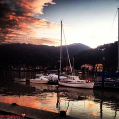 sailboats, sunset barche a vela