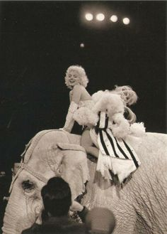 Marilyn Monroe rides an elephant at the premiere of Ringling Brothers and Barnum Bailey circus. 1955 (History in Pictures) Norma Jean Marilyn Monroe, Marilyn Monroe Photos, Classic Hollywood, Old Hollywood, Hollywood Icons, Hollywood Glamour, Mademoiselle Coco Chanel, Barnum Bailey Circus, Barnum Circus