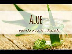 Quali vantaggi ottiene il nostro organismo nel momento in cui assumiamo regolarmente del succo di Aloe? Ce l'ha spiegato Isabella Massamba, dottoressa in Scienze Naturali, specializzata in botanica ed etnobotanica