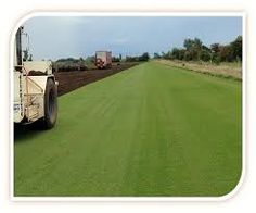 Turf Suppliers of Pro Sports Turf • Fast UK Delivery • Paynes Turf - http://www.paynesturf.co.uk/