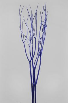 "Mitsumata Branches Purple (51"") 3 for $4"
