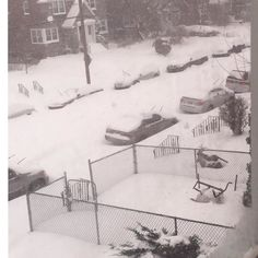 From the blizzard of 2016  #blizzard #blizzard2016 #blizzardof2016 #explore #np #phila #philly #philadelphia #phillyshit #igers_philly #instaphilly #snow #snowy #snowyday #snowstorm #weather #northeastphiladelphia #car #cars #photo #photos #instapicture #instapictures #photooftheday #photos #standstill #snap #snapchat #photooftheday #picoftheday by fargone1