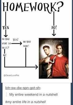"""My entire life in a nutshell"" #tumblr #supernatural"