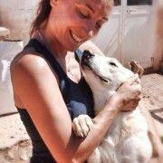 Adozione cani - Cassandra è bella dolce socievole con tutti, bisognosa di coccole attenzioni ed è in grado di riempire il cuore