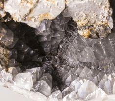 Calcite in a Sea Urchin Fossil - Calais, Nord Pas de Calais, France