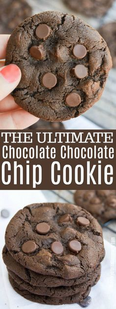 One of my favorite cookie recipes. These Chocolate Chocolate Chip Cookie are a c., Desserts, One of my favorite cookie recipes. These Chocolate Chocolate Chip Cookie are a chocolate lovers dream. Gooey chocolate cookie full of chocolate chips! Chocolate Desserts, Chocolate Chocolate, Chocolate Lovers, Chocolate Christmas Cookies, Chocolate Desert Recipes, Holiday Cookies, Brownies Cacao, Keks Dessert, Favorite Cookie Recipe