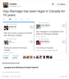 Haters: I'm moving to Canada Me: gay marriage has been legal there for 10 years so you'll just end up in the same position you are now, surrounded by people who are married to their true love My Tumblr, Tumblr Posts, Tumblr Funny, Funny Memes, Hilarious, Funny Tweets, America Funny, Moving To Canada, Faith In Humanity