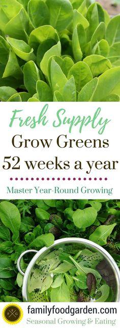 Grow Greens Year-Round