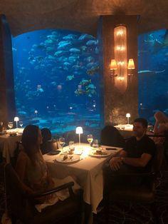 Ossiano, Dubaï - Restaurant Avis, Numéro de Téléphone & Photos - TripAdvisor Dubai Aquarium, Restaurants, Trip Advisor, Board, Photos, Pictures, Restaurant, Planks