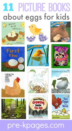 Fun, hands-on game to help your preschool or kindergarten students learn about oviparous animals. Includes a free count, tally, and graph printable. Preschool Eggs, Preschool Literacy, Kindergarten Science, Preschool Books, Kindergarten Classroom, Kindergarten Pictures, Toddler Preschool, Preschool Ideas, Teaching Ideas