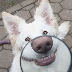 """""""Nowadays, I'm always smiling for my close-ups!"""" 