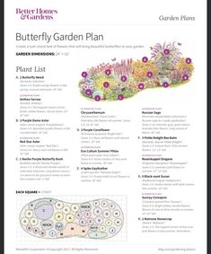 The Plan, How To Plan, Amazing Gardens, Beautiful Gardens, Flower Garden Plans, Flower Garden Design, Hummingbird Garden, Easy Garden, Better Homes And Gardens