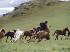 On the Mongolian plains. Someday...