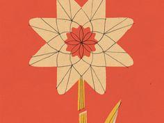 Flower, Lydia Nichols
