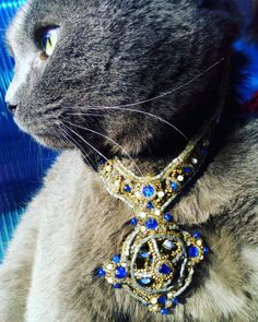 Handmade necklace beading handcraft strass blue moonstone cat #handmade #necklace #handcraft #handmadenecklace #bluenecklace #glassbeads #catstone #cat Diy Necklace Making, Crochet Necklace, Beaded Necklace, Blue Moonstone, Blue Necklace, Handmade Necklaces, Glass Beads, Beading, Cats