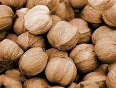 Those of you who follow this blog know I was born and raised in Indiana where native hickory trees were prevelent.  Hickory nuts were our fa...