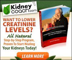 Kidney Diet, Kidney Treatment, Kidney Disease, Renal Failure, KidneyCoach.com :