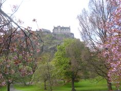 Edinburgh Castle framed by cherry trees in full bloom in May. Stay nearby at Craigwell Cottage - a self-catering property in the heart of Edinburgh. Within easy walking distance of Princes Street. More at: http://www.2edinburgh.co.uk