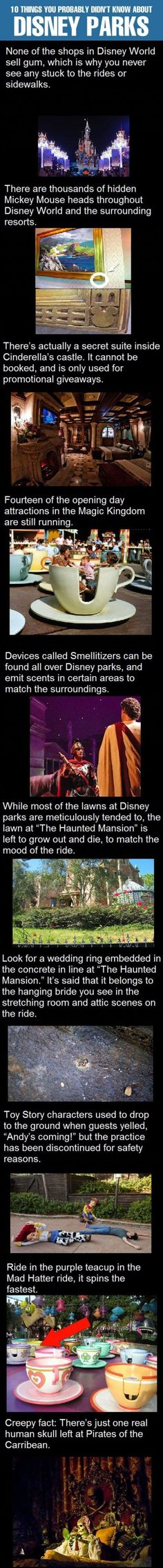 Cool Disney Fact Comp  // funny pictures - funny photos - funny images - funny pics - funny quotes - #lol #humor #funnypictures