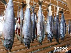 salmon-secado