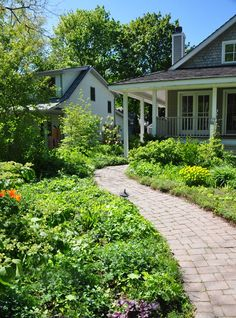 Three Dogs in a Garden: Using Lines to Advantage in a Garden Setting