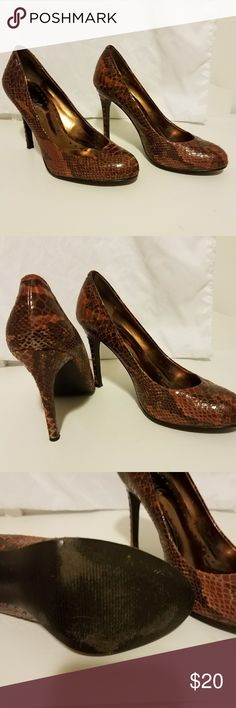 BCBG snake skin print heels Rounded toe burnt orange color good used condition BCBG Shoes Heels