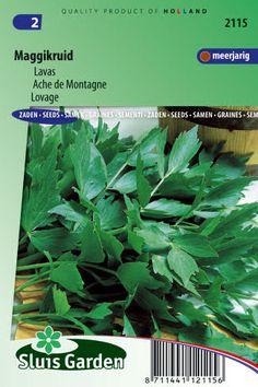 Semená byliniek : Semená, Ligurček lekársky (Maggi) 1g ±275 semien