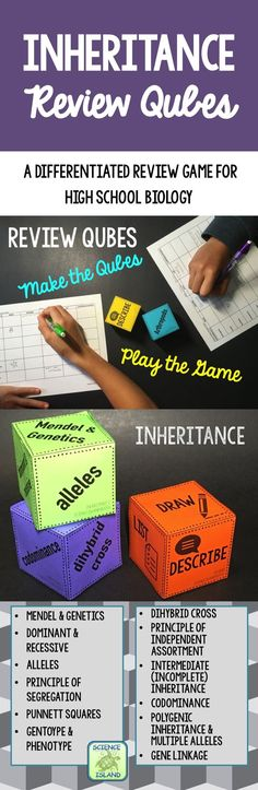 Love this Biology review game for my Genetics unit!