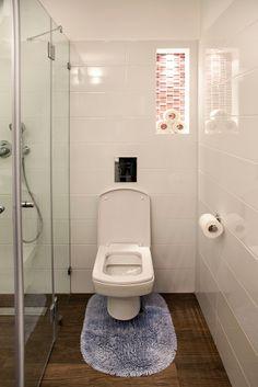 shower / bathroom / toilet  design by dana shaked שירותים בדירת יוקרה עיצוב דנה שקד