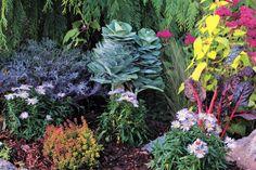 Fall garden -- WSHG.NET | Debbie Teashon's Rainy Side Garden | WestSound Home & Garden