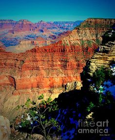 Grand Canyon I -     Thanks for visiting my gallery...